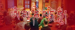 Közös gyakorlás és vacsora a Karmapa Házban