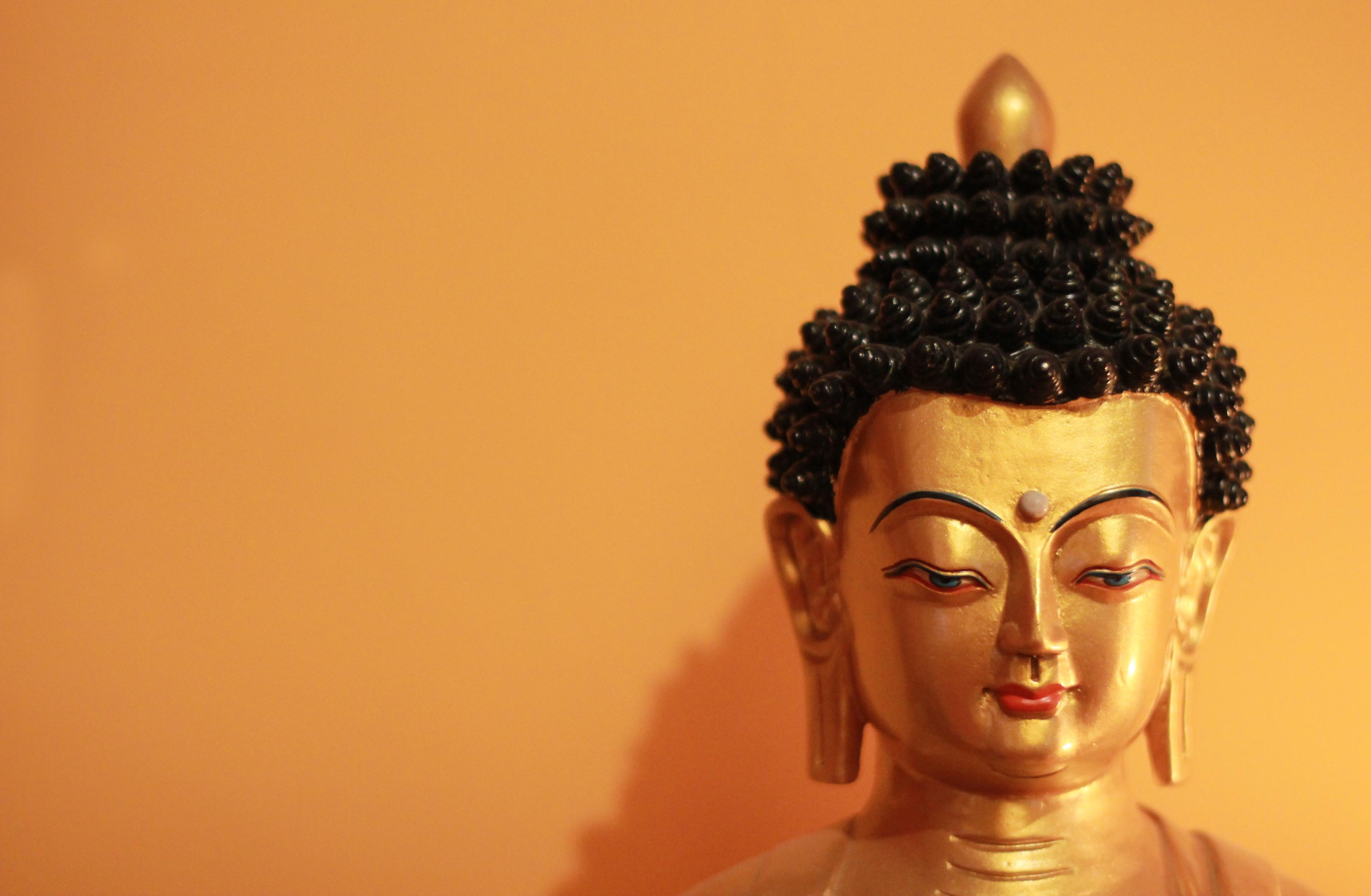 Lodzsong-nap - Láma Csöpel tanításával és közös gyakorlással @ Karmapa Ház | Budapest | Magyarország